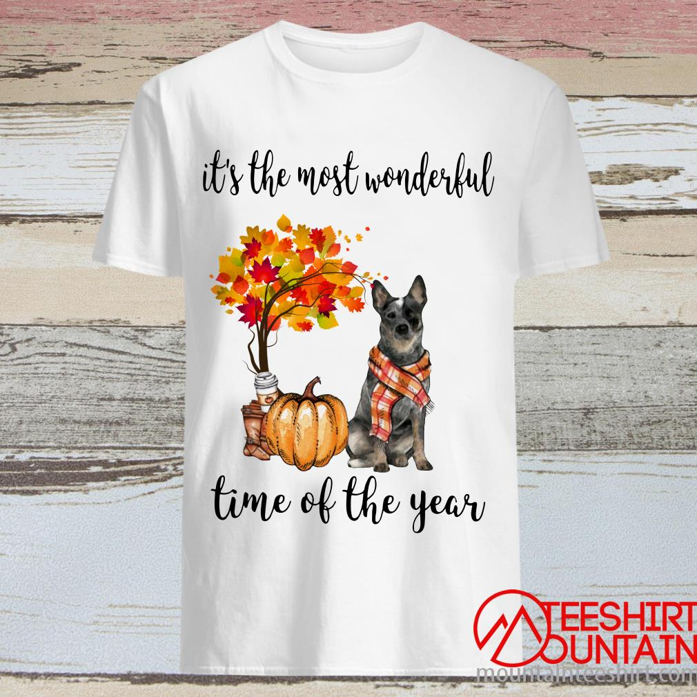 Doberman Pinscher Autumn It's The Most Wonderful Time Of The Year Shirt