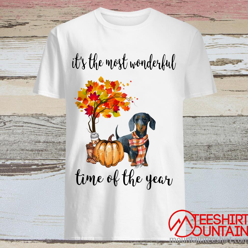 Dachshund Corgi Autumn It's The Most Wonderful Time Of The Year Shirt