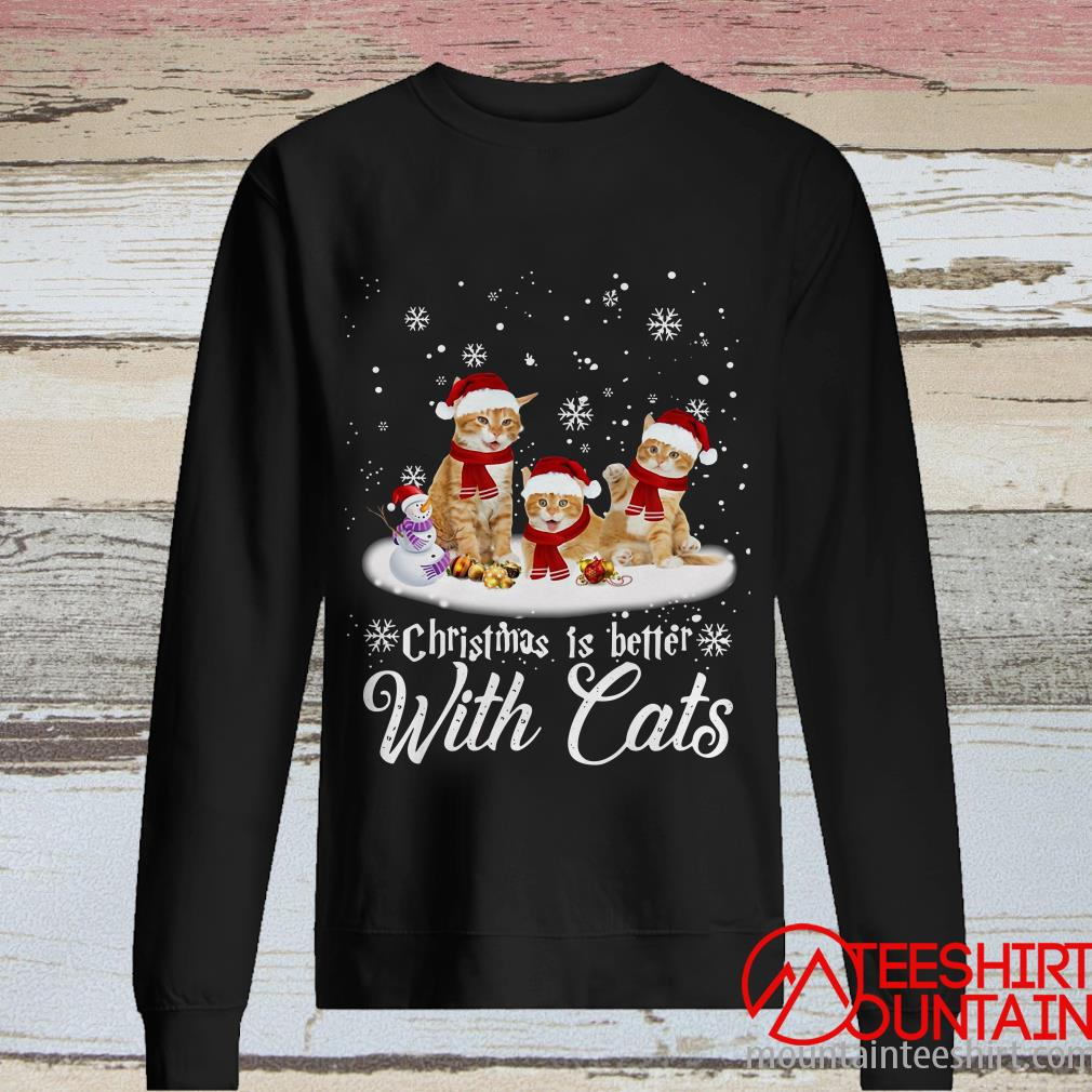 Christmas Is Better With Cats Hooded Sweater